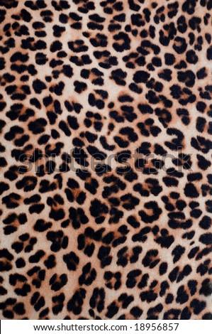 Leopard pattern texture #18956857