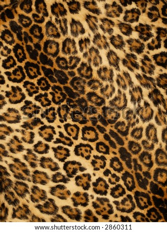 Leopard Background on Stock Photo Leopard Print Background 2860311 Jpg