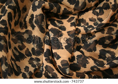 animal print background. stock photo : Leopard print