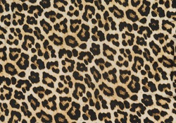 Leopard seamless pattern. Leopard spots. fabric texture closeup