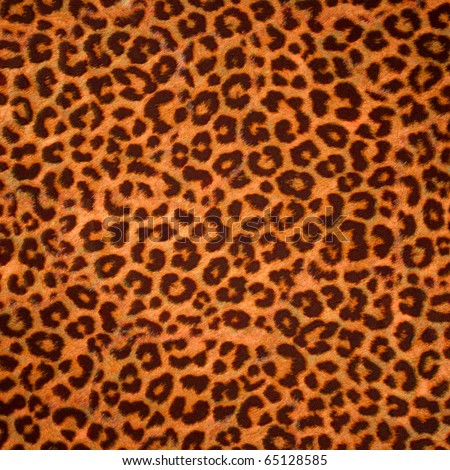 Leopard Background on Leopard Skin Background Or Texture  Large Resolution Stock Photo