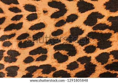 leopard skin colour textured pattern
