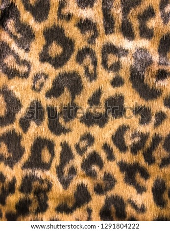 leopard skin colour textured pattern-sweater texture