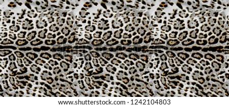 Leopard skin, leopard fur, leopard texture