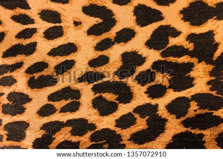 leopard skin pink colour textured pattern