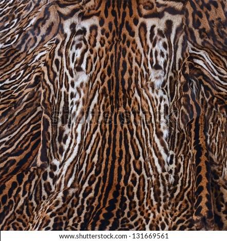 leopard skin texture - stock photo