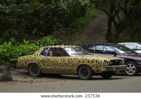 Leopard spotted car in a parking lot, Kauai Island, Hawaii