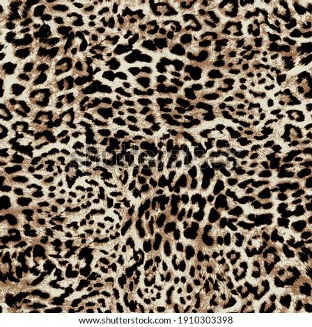 Leopard texture, animal print, african animal fur