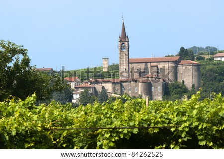 Lessinia (Verona, Veneto, italy), vineyards  at summer and village with ancient church