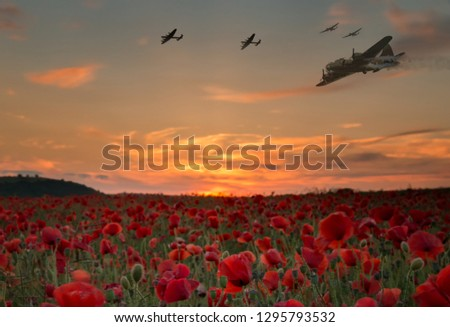 Lest we forget,scene of bomber planes flying over a poppy field as the sun goes down, Anzac day and Remembrance day.  Stock fotó ©