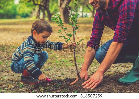 Let me help you! Little boy helping his father to plant the tree while working together in the garden