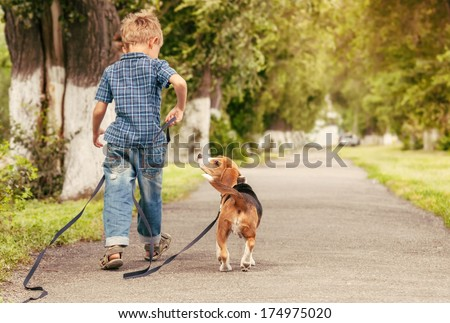 Let'S Play Together! Boy Walk With Beagle Puppy
