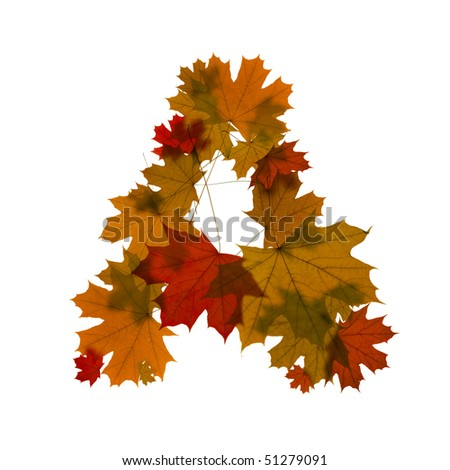 letter A from red autumn maple leaves