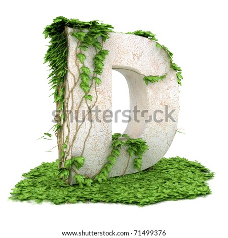 Letter D threads covered with ivy isolated on white background.