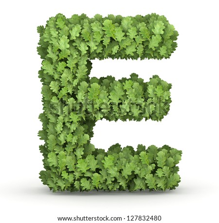 Letter E from fresh green oak grow leaves