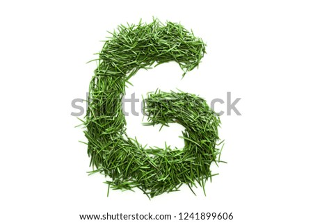 Letter G, alphabet made of green grass. Isolated on white background #1241899606