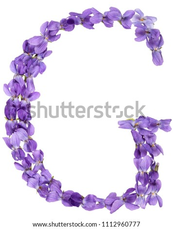 Letter G from alphabet, from flowers of violet, isolated on white background #1112960777