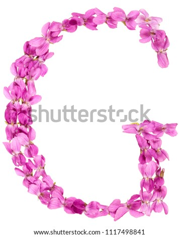 Letter G from alphabet, from flowers of violet, isolated on white background #1117498841