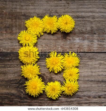 Free Photos Letter G Made Of Flowers Avopixcom