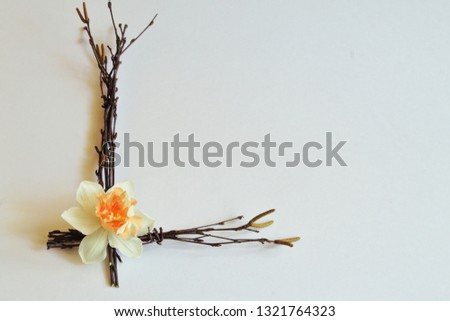 Letter L from birch twigs adorned with delicate fragile white narcissus on light background. Minimal style. Symbolic concept for Mother's day, birthday, wedding day, lovers day. #1321764323