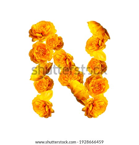 Letter N of English alphabet made from yellow tulips. Alphabet from flowers isolated on white background, yellow fresh tulips. Letters from natural materials, spring, bloom, floral composition, layout Foto stock ©