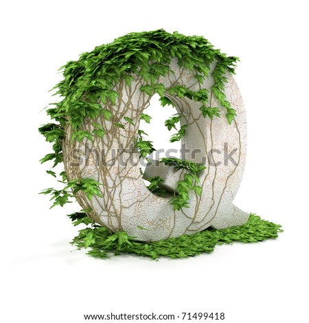 Letter Q threads covered with ivy isolated on white background. - stock photo