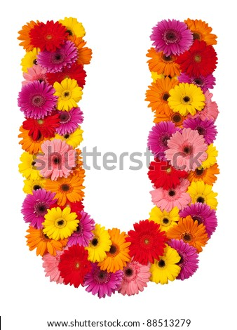Letter U - flower alphabet isolated on white background
