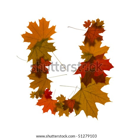 letter U from red autumn maple leaves