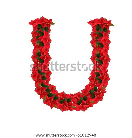 Letter U from the red flowers isolated on white background