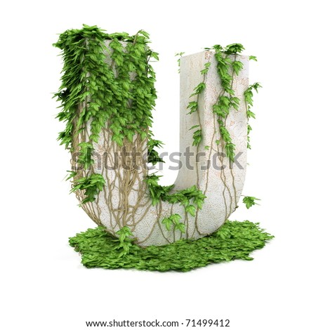 Letter U threads covered with ivy isolated on white background.