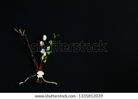 """Letter """"V"""" (Victory) of dry twigs of birch and twigs of willow and birch with young leaves on dark background. Symbolic concept of struggle of opposites — good and evil, life and death. Minimal style. #1335812039"""