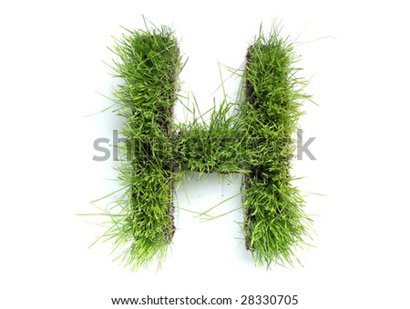 Letters made of grass - H