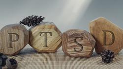 Letters PTSD written on wooden irregular blocks. Abbreviation for Posttraumatic stress disorder.