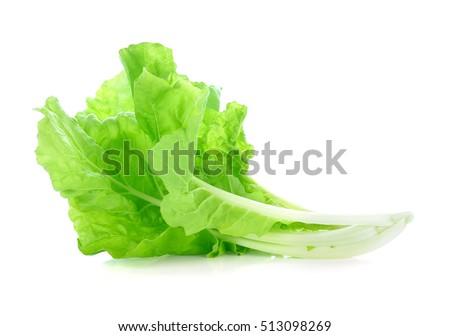 lettuce leaves isolated on white background #513098269