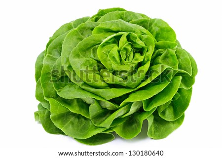 Lettuce Salad Isolated On White