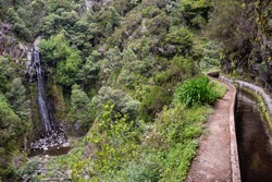 Levada dos Tornos is a hiking path in Funchal, Madeira Island. This water channel guides you trough Madeira Island's exotic forest and mountains.