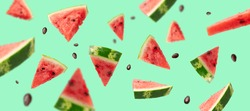 Levitation of ripe pieces of watermelon. Green summer background