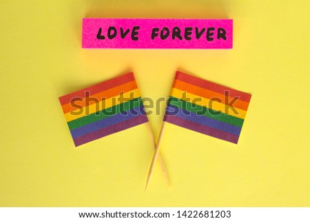 LGBT, LGBTQ, symbols on rainbow flags, two checkboxes with the symbolism. Inscription: love forever. Rights of homosexual people.