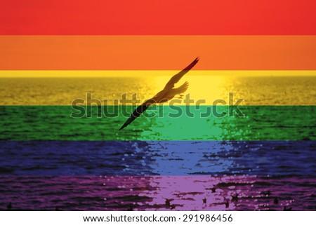 Бисексуалы на море смотреть онлайн фотоография