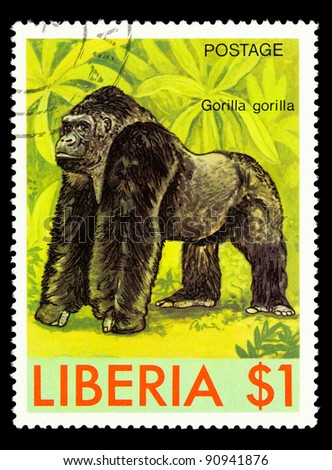 LIBERIA - CIRCA 1981: A stamp printed in Liberia shows monkey, series animals, circa 1981