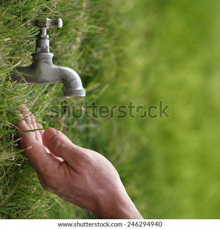 Life and water, nature and lifestyle conceptual photo. Taken outdoor, nice sunlight effect.