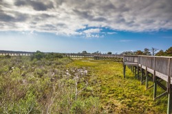Life of the Marsh Nature Trail at Assateague National Seashore in Maryland on the Delmarva Peninsula