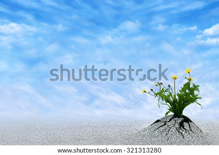 Life Persists. Inspirational and conceptual image for hope, winning, never give up, struggle, persistence, motivation etc. Copy space for presentation text. Сток-фото ©
