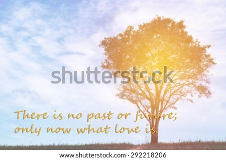 life quote. Inspirational quote