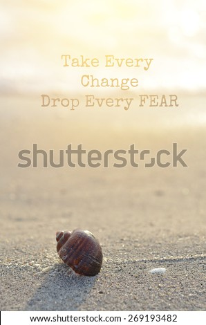 life quote. Inspirational quote by Inspirational Quote by Unknown Source  Motivational background on Clamshell on sunny beach in morning