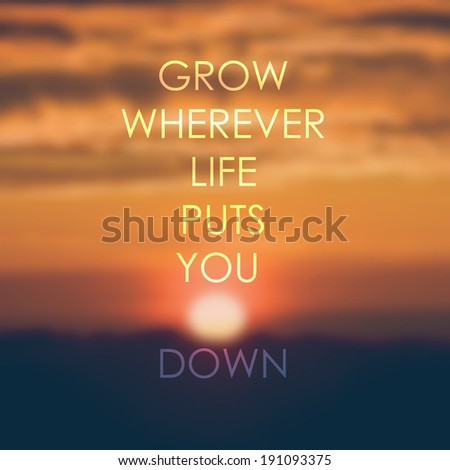 Life quote  on sunrise  background, inspirational background. Life quote.