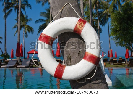 Lifebuoy hanging on a palm tree in Thailand