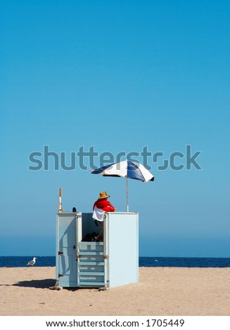Lifeguard and sea gull on duty