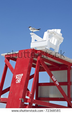 lifeguard chair at beach with seagull
