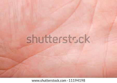lifeline macro on 40 years old male hand